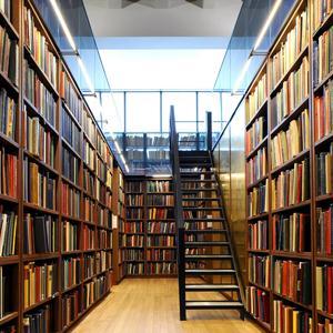Библиотеки Сенгилея