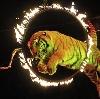 Цирки в Сенгилее